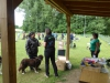 Rally_Obedience_Knittlingen_2015a56