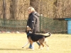 Conny und Finn bei der Fußarbeit