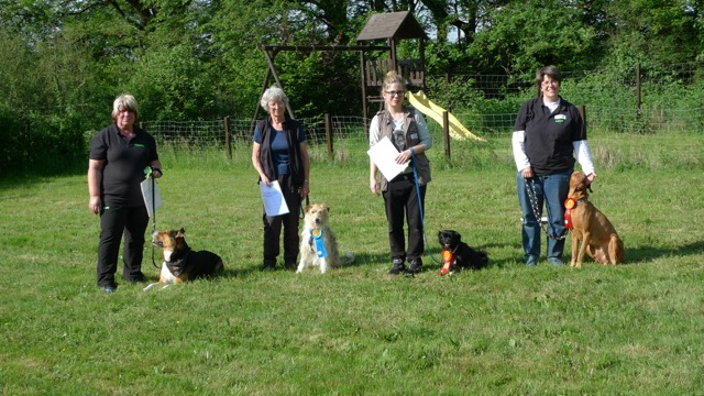 Rally_Obedience_201513